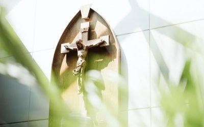 Explore the Catholic Faith!